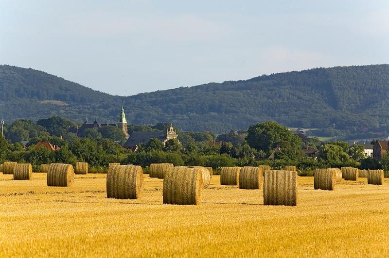 Strohballen vor Bückeburg