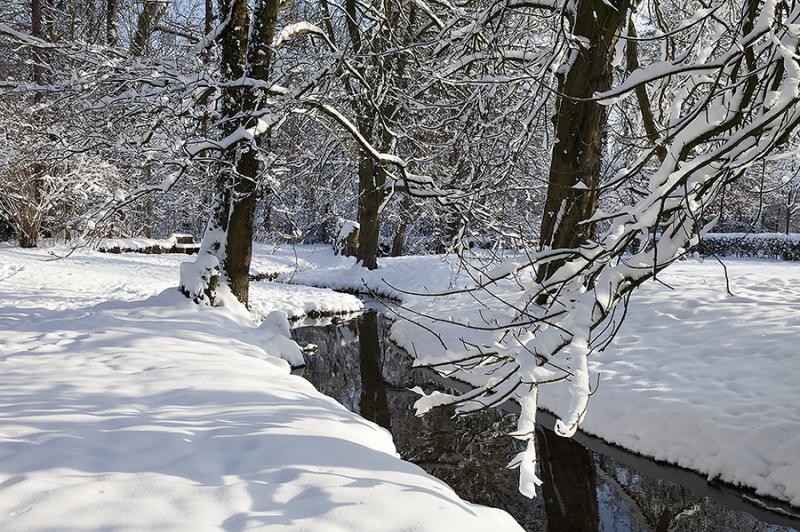 Schlosspark Bückeburg Winter