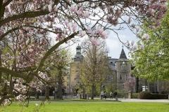 Schloss Bückeburg im Frühling