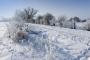 0591L Bueckeburg Scheier Bruch Winter