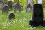 8721C Judenfriedhof am Harrl Bueckeburg