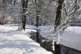 9131D Schnee im Schlosspark Bueckeburg