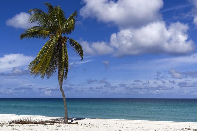 5857Sa-Strand-Karibik-Cuba-mit-Palme
