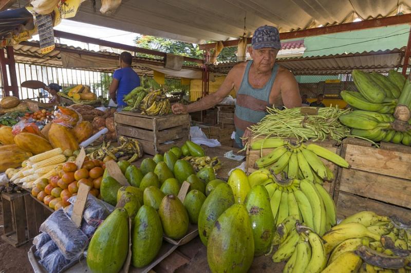 5227Sa-Gemüsemarkt-Havanna-Cuba1