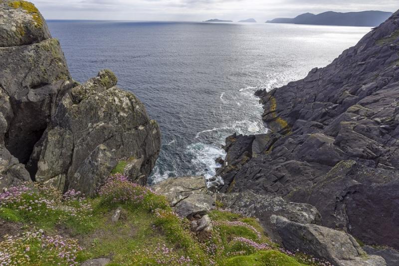 3395Sa Küste bei Dingle Irland