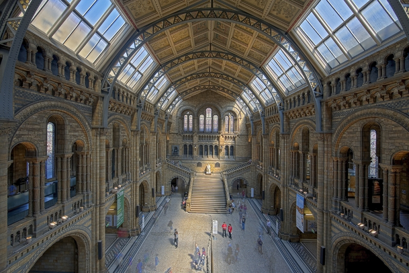 Eingangshalle Natural History Museum London