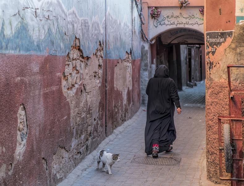 Marrakesch Marokko Medina Frau Katze