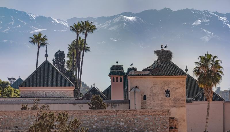 0876R-Marrakesch-Palais-El-Badi-Moschee-Störche-Nest-Marokko-Atlas-Gebirge