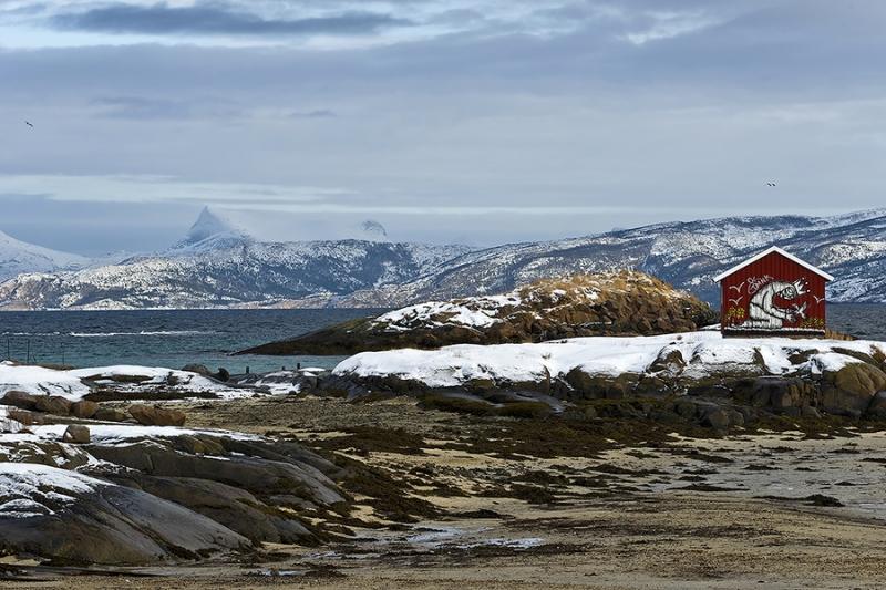1416L-Haus-am-Tysfjord-Norwegen