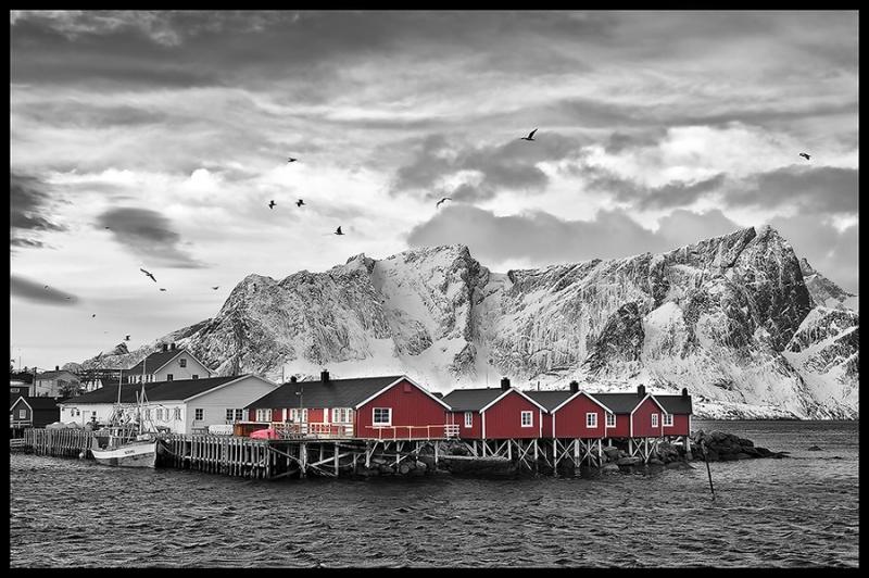 8071G-Lofoten-Nähe-Reine-sw-mit-roten-Hütten