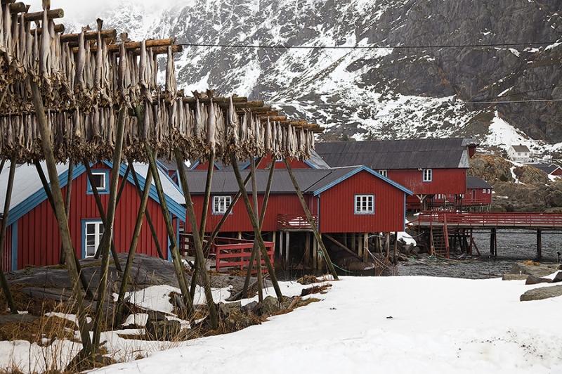 8373GH-Fischerhäuser-A-Lofoten