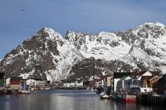 0145H-Henningsvaer-Hafen-Lofoten