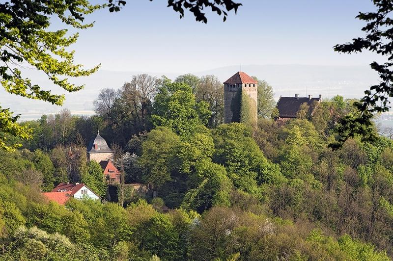 7980-Schaumburg
