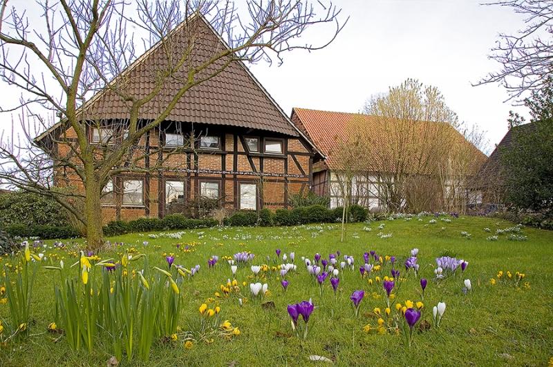 9954A Frühlingsgarten mit Fachwerkhaus