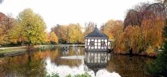 Stadtpark Stadthagen Herbst