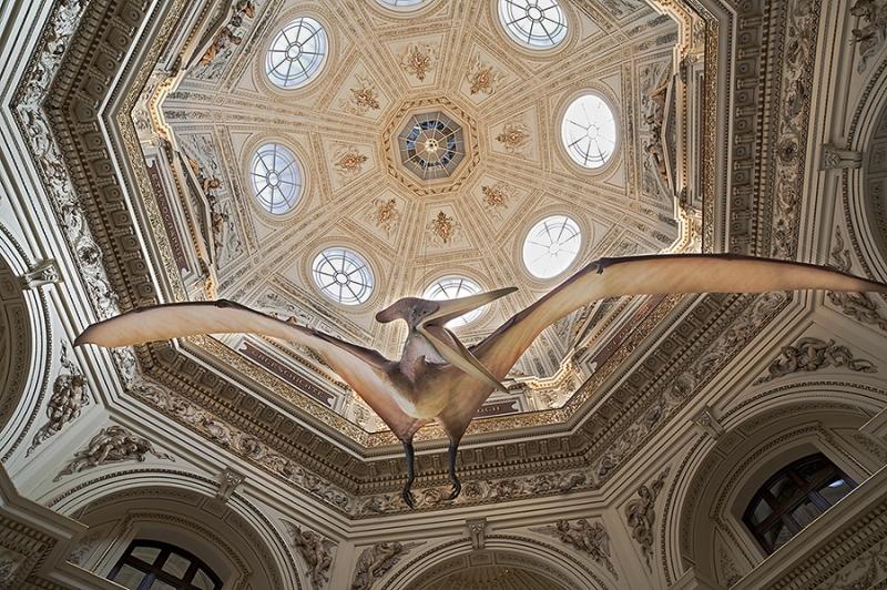 6962F-Decke-im-Naturwissenschaftlichem-Museum-Wien